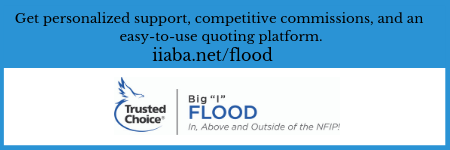 Big _I_ Flood (450 x 150).png